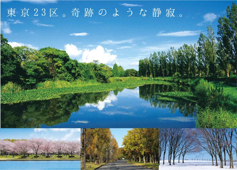 真夏の暑い時期は東京の避暑地で過ごすと熱中症予防にもなり快適に過ごせます!