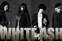 ホワイトアッシュ