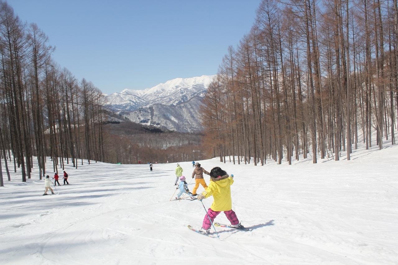 都内から家族と行ける雪遊びレジャー施設!車で行くも良し、バスツアーを使うもよし!