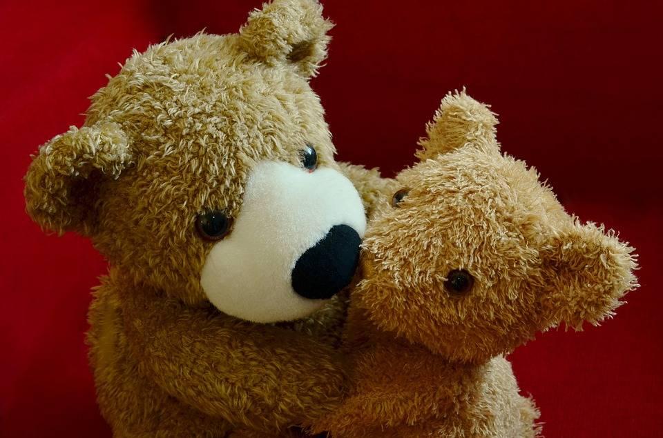 teddy-1113207_960_720