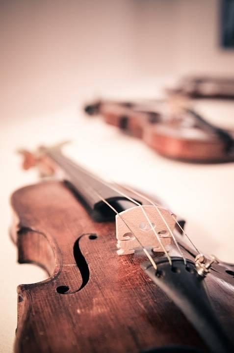 violin-338518_960_720